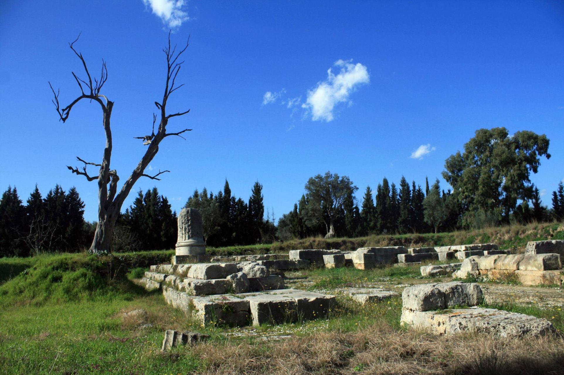 Locri Tempio Maras