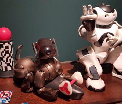 Cane robot Aibo Robot Nao